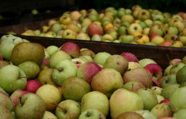 Artisanale stroopmakerij Nyssen-Gastronomie tot Provincie Luik