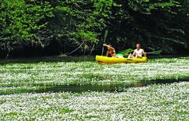 <p>Les passeurs réunis: descente en kayak</p>-Kayak tot Provincie Luxemburg