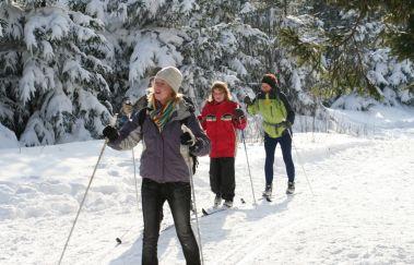Skipiste van Baraque Michel-Ski de fond tot Provincie Luik