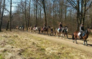 Ecurie des îles-Equitation tot Saint-Hubert