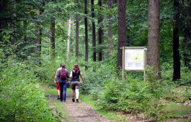 Open Plek van So Bechefa-Parcours Vita tot Provincie Luxemburg